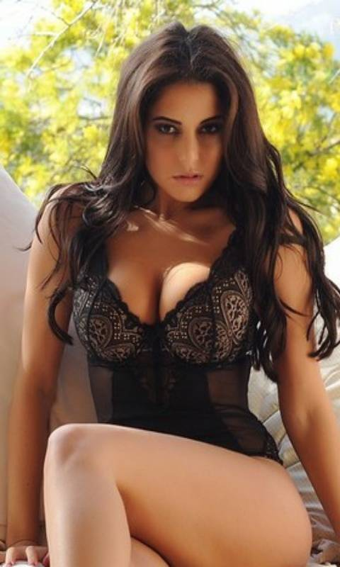 Chandigarh VIP Escorts